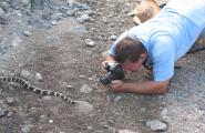 Photography workshop instructor Dan Cotton photographing a California King Snake